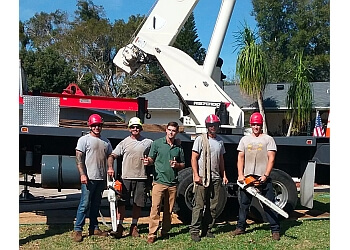 Orlando tree service  McCullough Tree Service