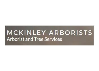 Glendale tree service McKinley & Associates
