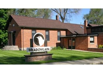 Ann Arbor home builder Meadowlark