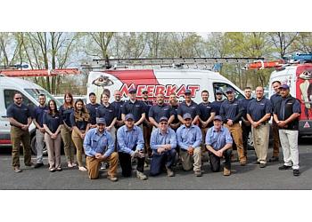 Albany pest control company Meerkat Pest Control LLC
