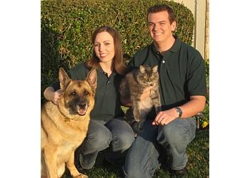 Riverside dog walker Melton's Pet Care