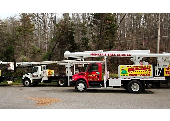 Knoxville tree service Mencer's Tree Service, LLC