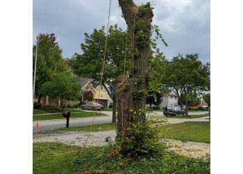 Aurora tree service Mendez Tree Services Inc.