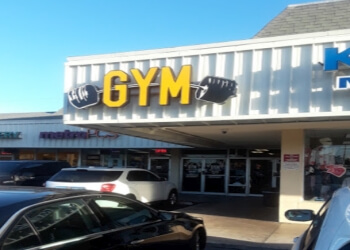 Miami gym Miami Iron Gym