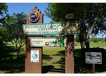 Tallahassee hiking trail Miccosukee Canopy Road Greenway