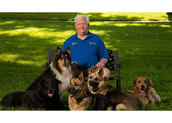 Kansas City dog training Midas Touch Dog Obedience School