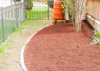 Aurora lawn care service Miguel's Lawn Care Inc.
