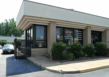 Chesapeake auto body shop Mike's Paint & Body II Inc.