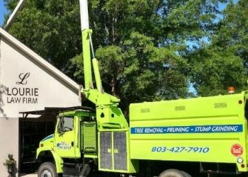 Columbia tree service Mikes Tree Service