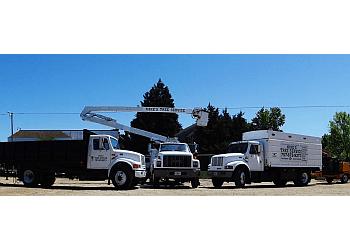 Virginia Beach tree service Mike's Tree Service, Inc.