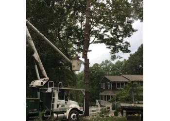 Newark tree service Millenium Tree Services Inc.
