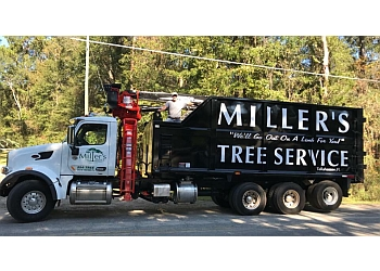 Tallahassee tree service Miller's Tree Service
