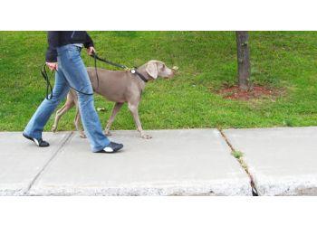 Milwaukee dog walker Milwaukee Pet Services
