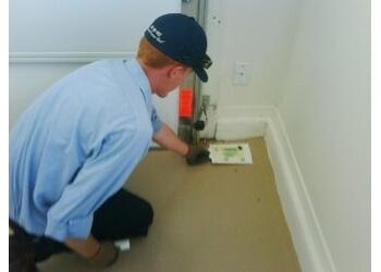 Miramar pest control company Miramar Pest Control & Exterminator