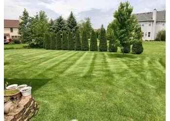 Naperville lawn care service Moe Mow's Lawn Care