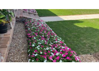 Norfolk lawn care service Moes Lawn Care