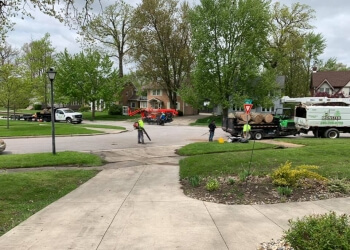Fort Wayne tree service Monster Tree Service
