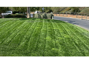 Santa Ana lawn care service Morales Landscape Management