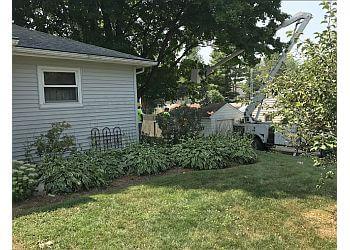 Rockford tree service Morning Wood Tree Service