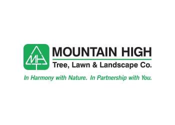 Lakewood tree service Mountain High Tree| Sava Tree Services