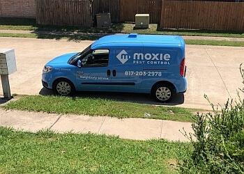Irving pest control company Moxie Pest Control