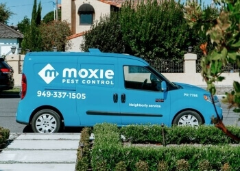 Irvine pest control company Moxie Pest Control Orange County
