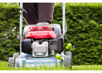 Anaheim lawn care service Mr. Luceros Landscaping