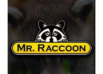 San Francisco animal removal MR. RACCOON