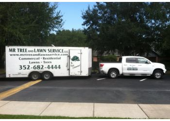 Gainesville tree service Mr Tree and Lawn Service
