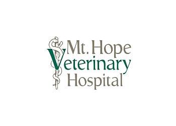 Lansing veterinary clinic  Mt Hope Veterinary Hospital
