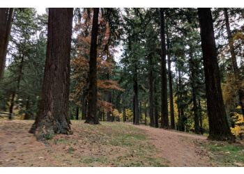 Portland hiking trail Mt Tabor Park