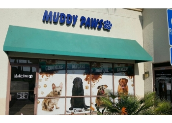 Orange pet grooming Muddy Paws Oc