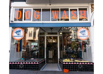 San Francisco pet grooming Mudpuppy's Tub & Scrub