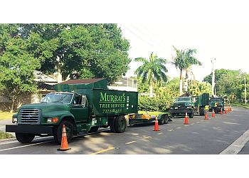 St Petersburg tree service Murray's Tree Service