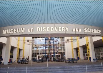 Fort Lauderdale places to see Museum of Discovery and Science