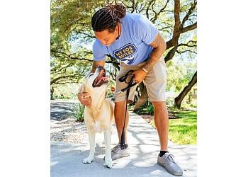 Phoenix dog walker My Dog Butler