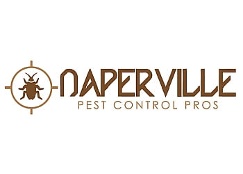 Naperville pest control company Naperville Pest Control Pros