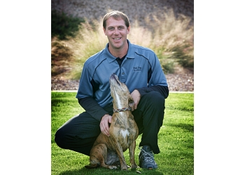 Phoenix dog training Nate Dog Training