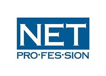 Hollywood web designer Netprofession