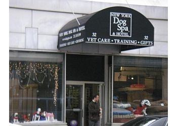 New York pet grooming New York Dog Spa and Hotel