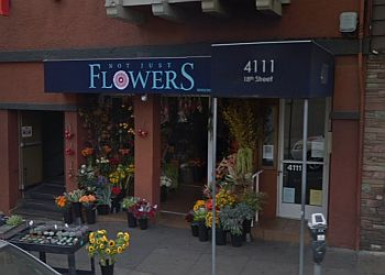 San Francisco florist Not Just Flowers