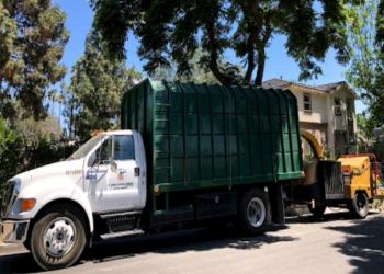 Anaheim tree service O.C. Tree Care