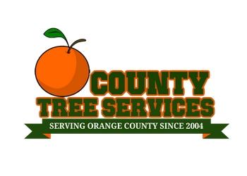 Santa Ana tree service OC Tree Services