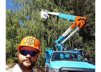 Fremont tree service ONE TWO TREE CARE