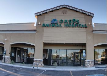 Chandler veterinary clinic Oasis Animal Hospital