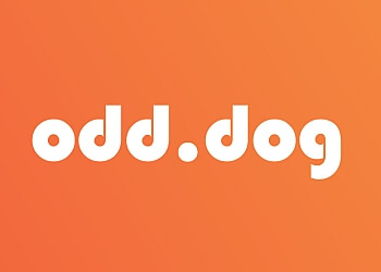Seattle advertising agency Odd Dog Media