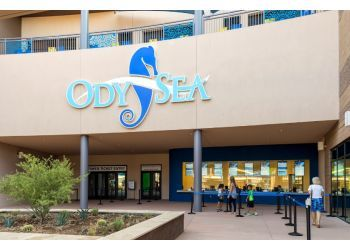 Scottsdale places to see OdySea Aquarium