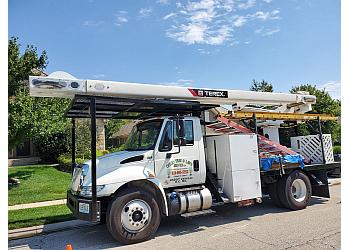Kansas City tree service Ofilio Tree Service & Lawn Service