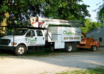 Olathe tree service Olathe Tree Service