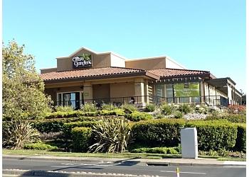 Vallejo italian restaurant Olive Garden